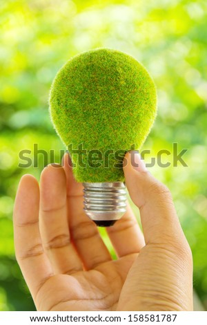 eco light bulb energy concept