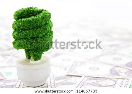 Eco light bulb with cash.