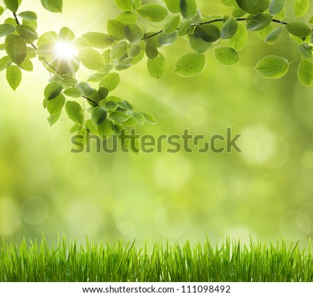stock photo eco nature green and blue abstract defocused background with sunshine 111098492 - Каталог — Фотообои «Природа, пейзаж»