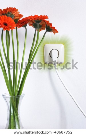 stock-photo-eco-or-natur-energy-socket-with-flowers-48687952.jpg