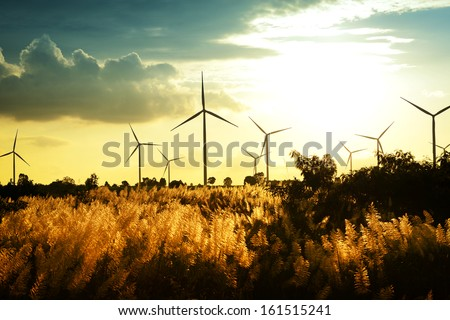 Eco power wind turbines at sunset
