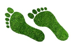 ecological footprint concept, barefoot footprint made of lush green grass isolated on white background