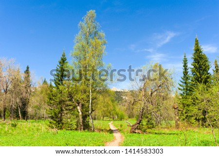 Ecological trail of the National Reserve Zyuratkul. Wood walking path to the plateau #1414583303