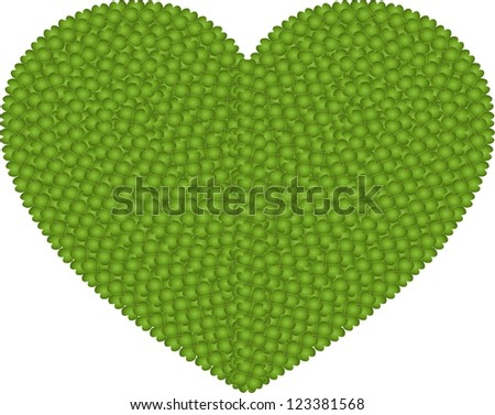 Ecology and Love Concept, Fresh Green Four Leaf Clover Forming A Big Heart Shape Isolated on White Background