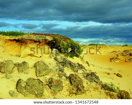 Ecology. Beautiful autumn tundra of the arctic north. Erosion of the sands at sunset #1341672548