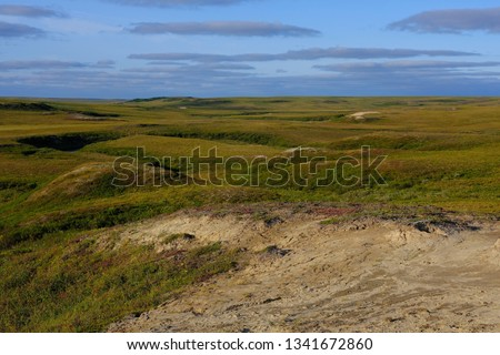 Ecology. Beautiful autumn tundra of the arctic north. Erosion of the sands at sunset  #1341672860