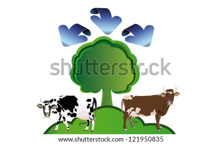Ecology concept.Healthy food and drink
