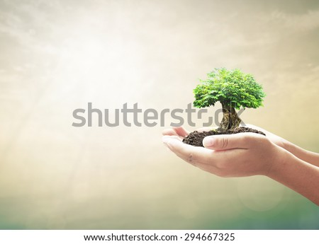 Shutterstock Ecology concept: Human hand holding big tree over blurred abstract beautiful nature background.
