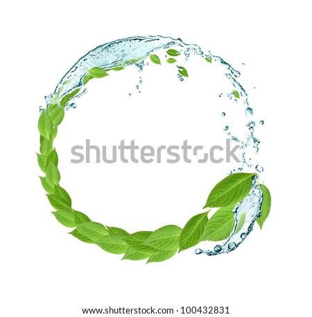Ecology concept.Round frame made from green leaves and splashing water