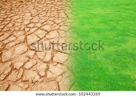 ecology landscape green grass and dry land