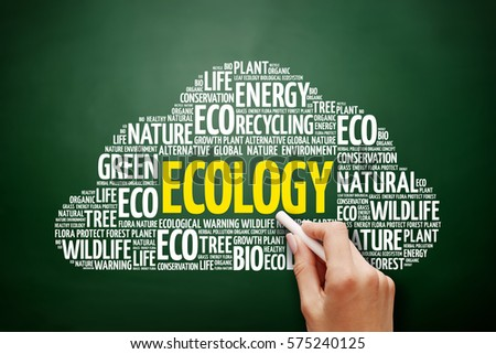 Ecology word cloud collage, green ecology concept on blackboard #575240125