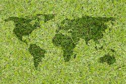 ecology world map, grass design