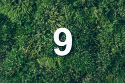 Ecology, zero waste. Green grass and digit nine 9. Birthday greeting card. Anniversary concept. Top view. Copy space. White numeral over eco moss background. Numerical digit
