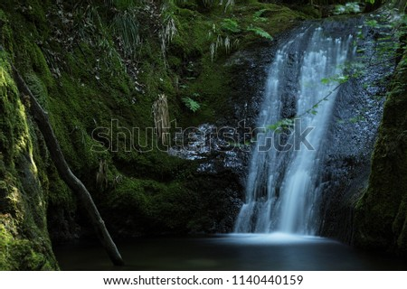 Edelfrauengrab Waterfall, Black Forest, Germany #1140440159