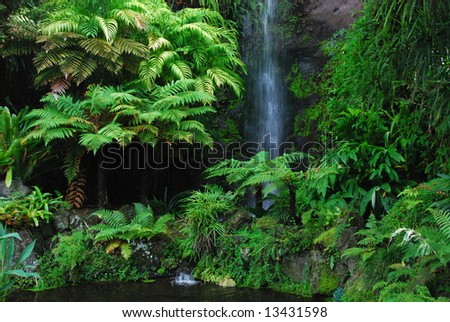 Eden Garden, Aucklan, New Zealand