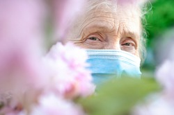 Ederly woman in a protective respiratory mask in a blossoming pink sakura tree. Quarantine, health, precautions. Coronavirus covid19. Spring enjoyment. Fear of illness. SARS-CoV-2 Epidemic