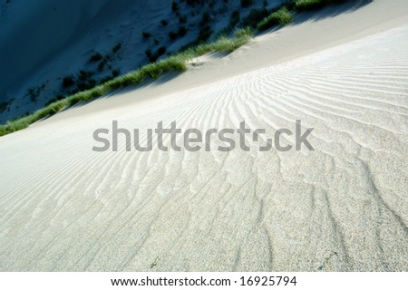edge of a dune