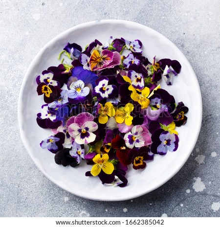 Edible flowers, field pansies, violets on white plate. Grey background. Close up. Top view. Stockfoto ©