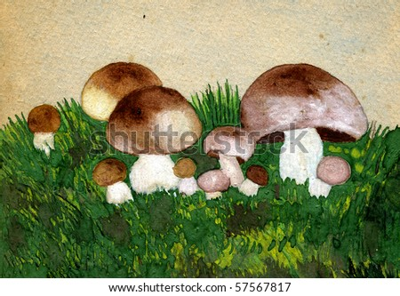 fungus research paper