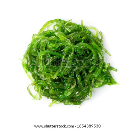Edible Green Algae, Sea Vegetable Isolated. Green Chuka Seaweed Salad Isolated on White Background. Edible Seaweed Top View