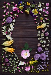 Edible plant and flowers on dark wooden background. Flower pattern. Composition with colorful flowers for cooking and herbal medicine. Creative layout with copy space for text. Top view.