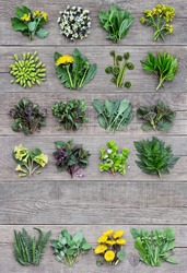 Edible plants and flowers, fresh spring harvest on a wooden rustic background. Medicinal herbs and wild edible plants growing in early spring. With copyspace.
