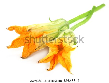 Edible pumpkin flowers over white background