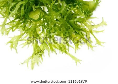 Edible seaweed salad on white background #111601979