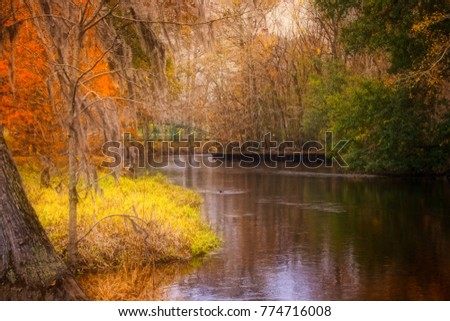 Edisto River in Orangeburg SC is the longest free flowing blackwater river in North America.