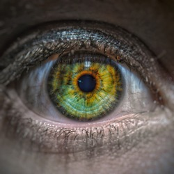 edited close up of the eye