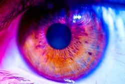 Edited colorful human eye