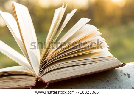 Education and wisdom concept - open book under sunlight outdoors #718823365