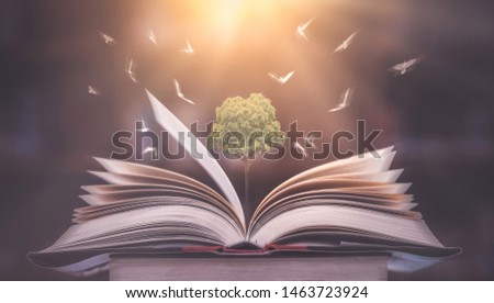 Education concept The growth of knowledge is represented by pictures of trees on the books, with birds flying around on that book. Is to lead the future of success #1463723924