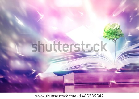 Education concept The growth of knowledge is represented by pictures of trees on the books, with birds flying around on that book. Is to lead the future of success