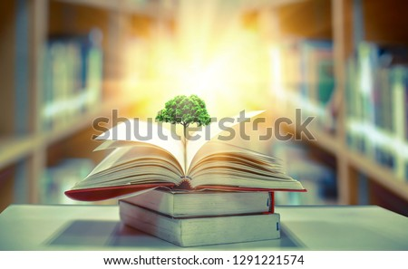 education concept with tree of knowledge planting on opening old big book in library with textbook, stack piles of text archive and aisle of bookshelves in school study class room