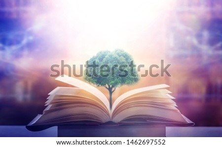 education concept with tree of knowledge planting on opening old big book in library with textbook, stack piles of text archive and aisle of bookshelves in school study class room #1462697552