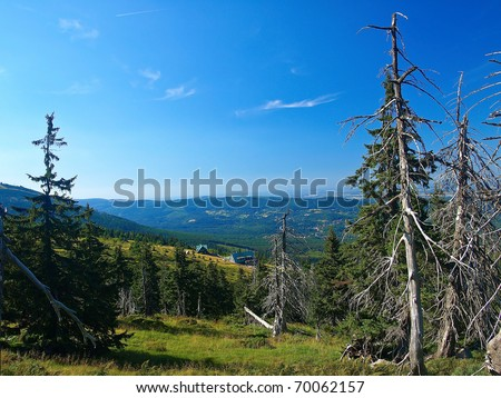 Effect of environmental pollution - a dead tree. Giant Mountains, Poland.