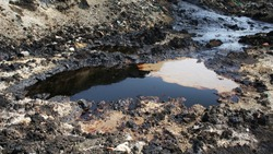 Effects nature from soil contaminated with chemicals and oil. Environmental disaster, contamination of the environment, toxic, pollution, detail. Dump toxic waste.