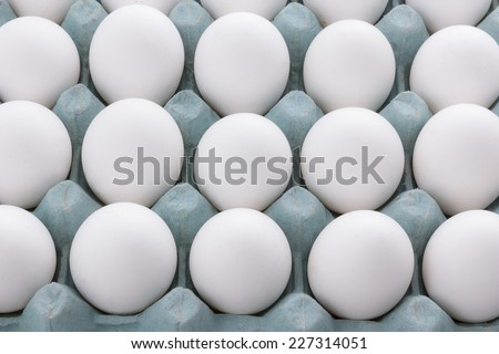 Egg in box packaging isolated on white background