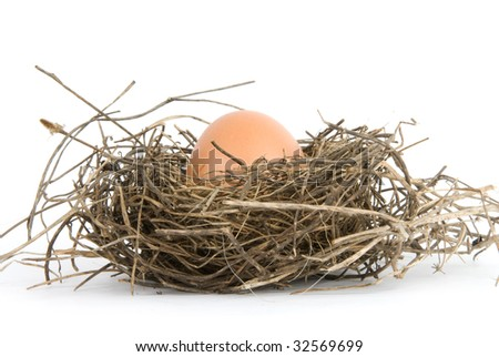 egg in nest isolated on white background