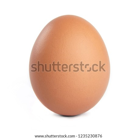 Egg isolated on white background. Cut out.
