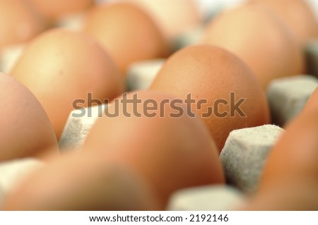 Egg standing.Cardboard Egg Support .