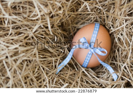 Egg tied with a  blue gingham ribbon, shallow depth of field