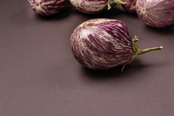 eggplant of unusual shape on a dark background.Organic products concept with striped eggplant