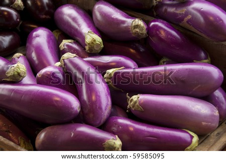 Eggplants on farmer's market stand