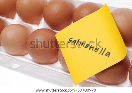 Eggs Can Carry Salmonella Concept with Brown Egg and Yellow Note.