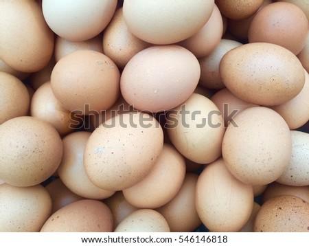 Eggs.chicken eggs.