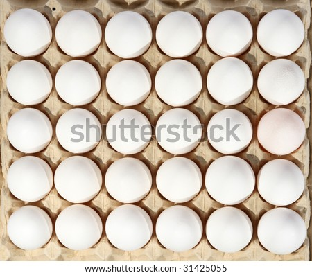 eggs in packing on a white background