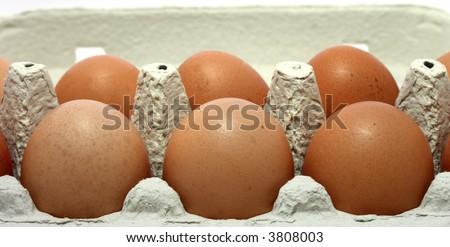 eggs in the carton, close-up, sharp shot