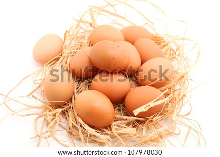 Eggs on hay nest isolated on white